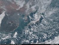 「ひまわり8号」可視画像 2017年2月13日12時JST