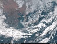 「ひまわり8号」可視画像 2017年3月8日12時JST